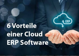 6 Vorteile Cloud ERP Software