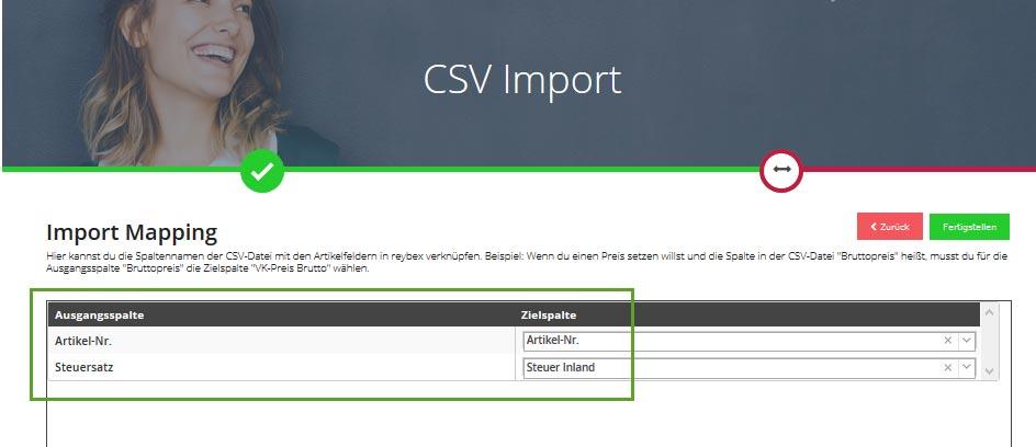 Screenshot CSV Update Steuerschlüssel im Artikel 2